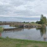 Wildhorse 18 golf course.