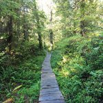 Foto di Ozette Loop Hike