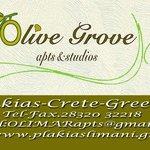 www.plakiaslimani.gr
