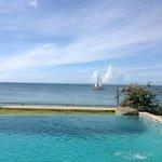 Pool and ocean view at Birdie's Nest
