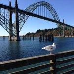 Newport  Bay Bridge and Yaquina bay
