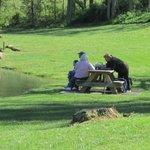 Guests enjoying a family picnic