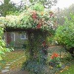 arbor at Snug Cottage