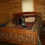 The master bedroom with King Size Bed (greyhound not included!)