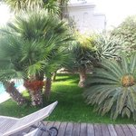 Gardens of the Canasta hotel..