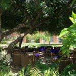 relaxing garden terrace