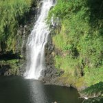 The falls and someone swimming in the pool