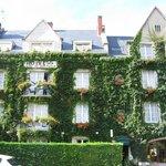 Ivy clad Anne de Bretagne, Blois