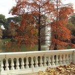 Lago lateral  con arboles de colores