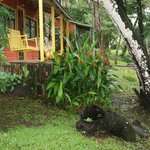 a few of the cabins overlooking the Belize River