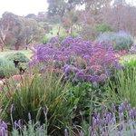 Gardeners' delight!