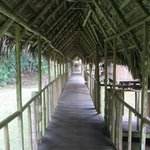 walkway to cabins