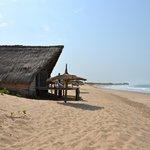 Le bungalow bar sur la plage