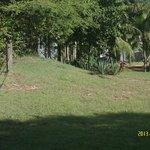 un des jardins et ses Iguanes