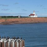 Wood Islands Lighthouse-near Ferry (to Nova Scotia) Terminal