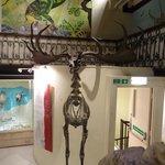 Galerie des dinosaures