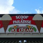Scoops of Paradise
