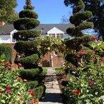 Garden topiary behind Glen Burnie