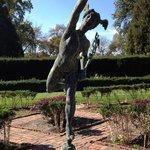 Mercury soars in garden behind Glen Burnie