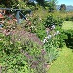 2+ acres of garden to wander through
