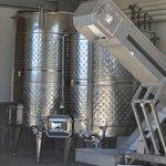 Wine harvesting equipment.
