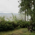 Lake Quinault next to Storm King Cabin