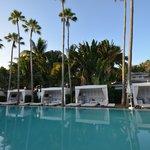 Delano Hotel -pool