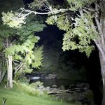 Trout stream at night