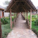 Walk path to the rooms
