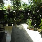 Orchid garden outside unit