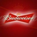 Beer that we server