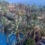 La piscine, les jardins et le bord de mer