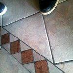 pavimento sala colazioni (peli di cane)