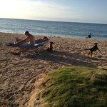 Praia de Cocoplum