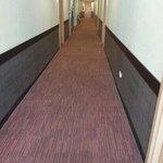 level 5 corridor