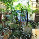The 'jungle' lobby, not your usual hotel