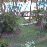 vista a la piscina desde la habitación