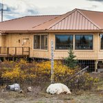 Nanuk Polar Bear Lodge