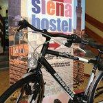 noleggio biciclette (Bianchi point)
