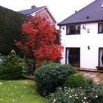 The beautiful backyard/garden of Claddagh House, with Fall colors