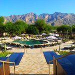 The newly renovated pools capture the Catalinas with its panoramic view.