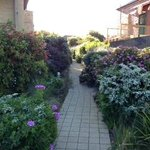 Great location, very nice landscaped path to apts.
