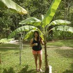 Melanie hanging with the banana trees