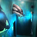 Artist depictions of Orca Whales in the Museum
