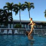 Un bel tuffo in piscina all'ombra delle palme!