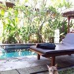 プライベートプールと猫ちゃん