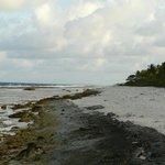 coté océan à marée basse