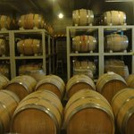 The Wine Cellar for Barrels and Barrels of Wine