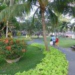Beautiful spacious Garden