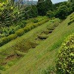 岱崎砦の畝堀